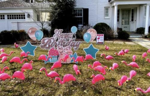 Flamingo Yard Flocking Windermere Florida
